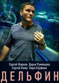 Дельфин (сериал 2020) 1-4 серия